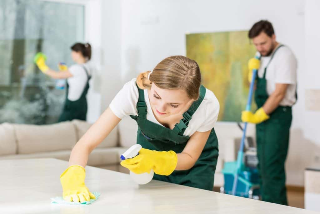 professional cleaning services provider in malaysia